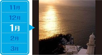 地球岬「初日の出」観覧