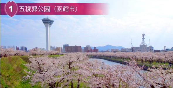 1 五稜郭後援(函館市)