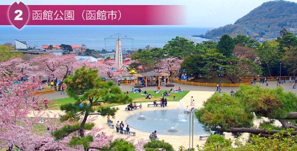 2 函館公園(函館市)