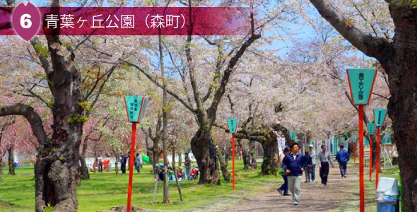 6 青葉ヶ丘公園(森町)
