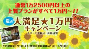 夏の大満足★1万円