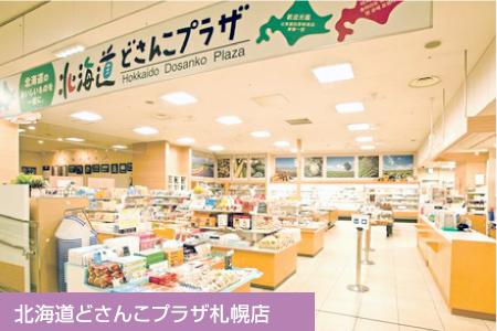 北海道どざんこプラザ札幌店