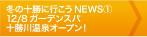 冬の十勝に行こうNEWS①12/8ガーデンスパ十勝川温泉オープン!