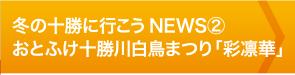 冬の十勝に行こうNEWS②おとふけ十勝川白鳥まつり「彩凛華」