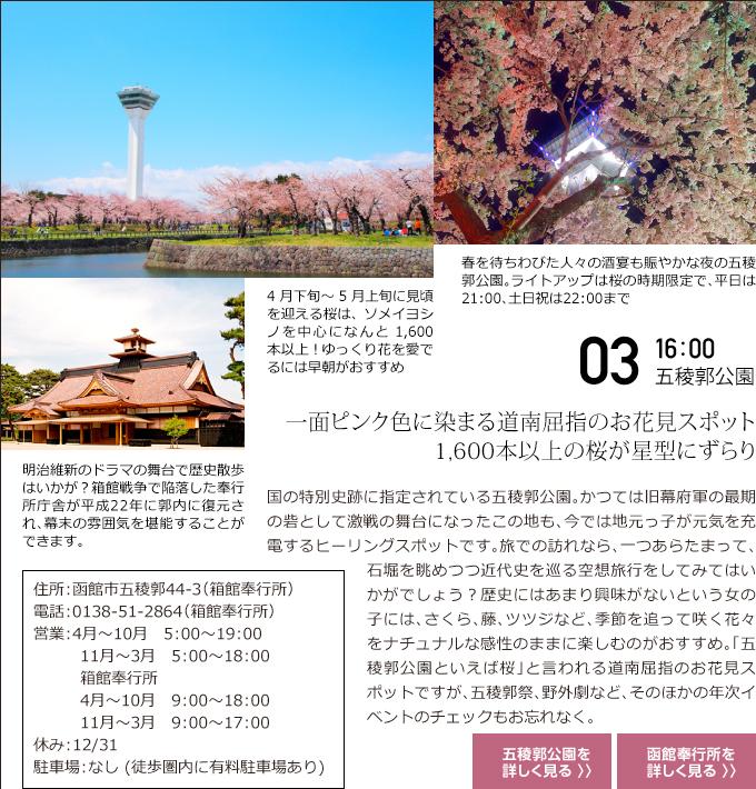 03 16:00 五稜郭公園