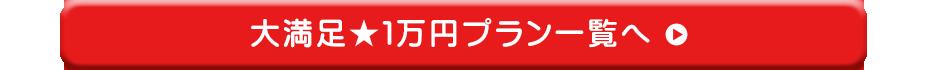 大満足1万円プラン一覧へ