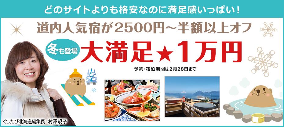 どのサイトよりも格安 冬の大満足1万円プラン