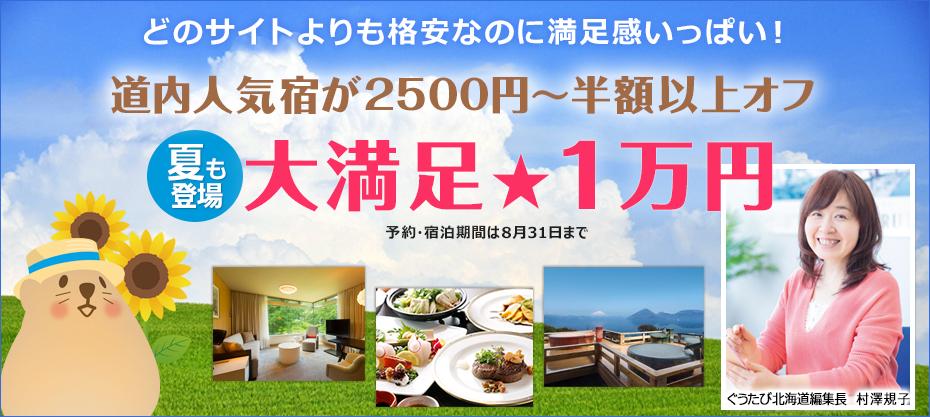 どのサイトよりも格安 夏の大満足1万円プラン