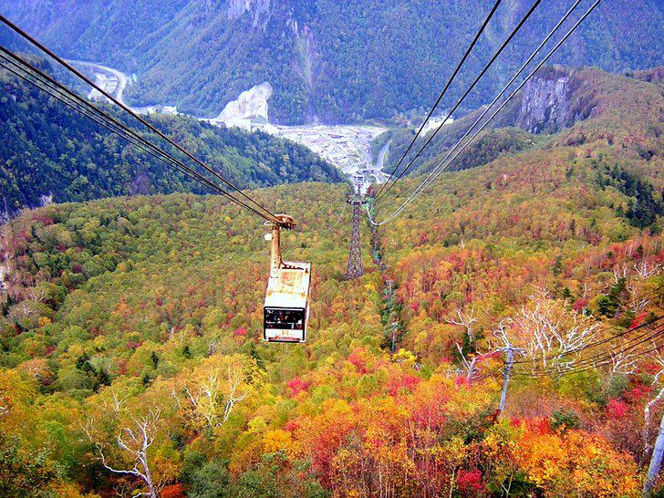 ロープウェイから見る黒岳の紅葉